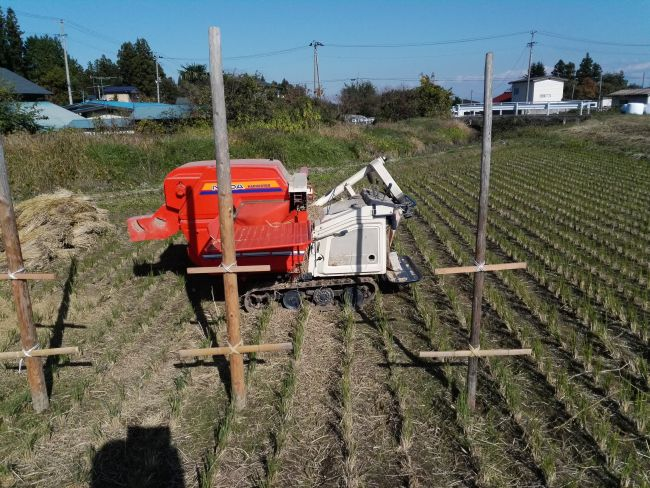 脱穀機と稲杭